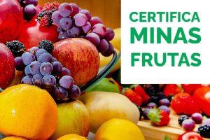 IMA lança cartilha para certificação de frutas