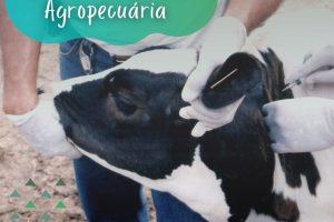 PASA contribui para a vacinação de animais de pequenas propriedades rurais