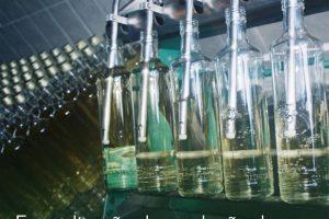 Formalização da produção de cachaça avança em Minas