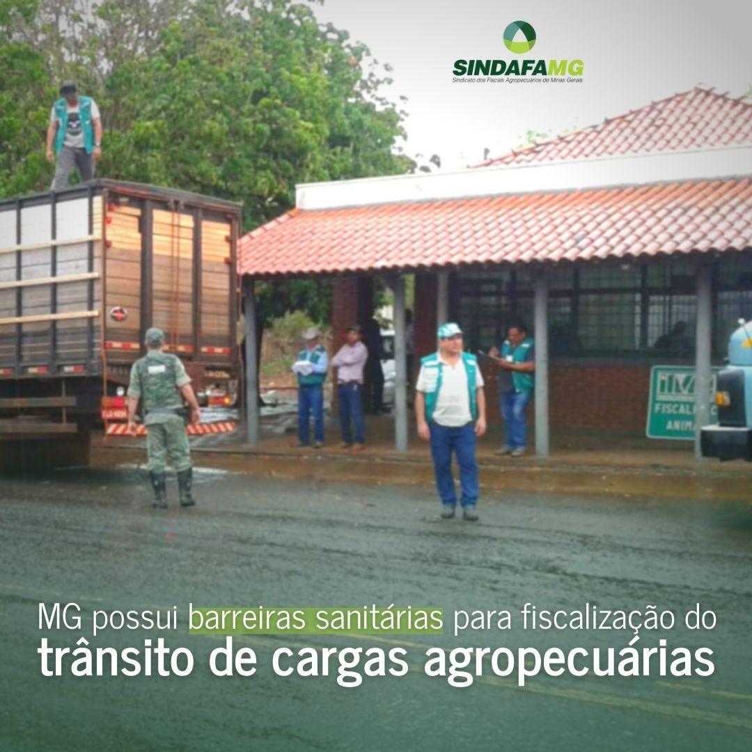 Barreiras sanitárias do IMA fiscalizam a qualidade dos produtos agropecuários que são comercializados