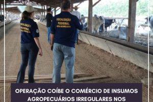 Fiscais agropecuários de Minas Gerais participam de operação do Ministério da Agricultura em Mato Grosso e Rondônia
